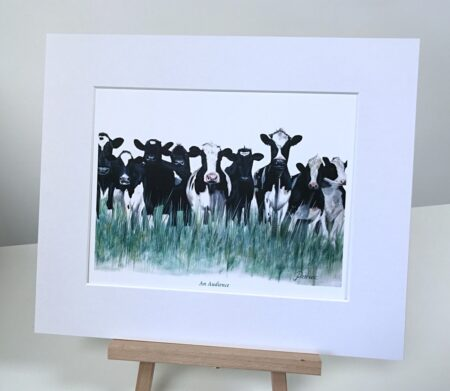 Cows Pankhurst Gallery