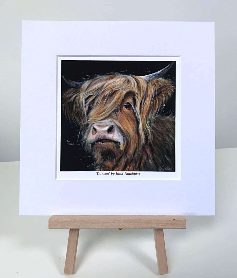 Duncan Highland Cow Pankhurst Gallery