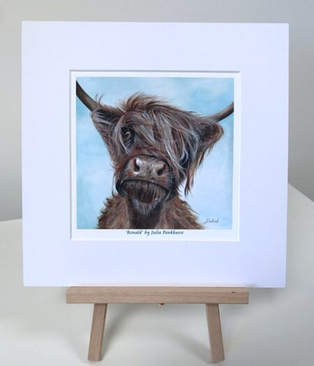 Ronald Highland Cow Pankhurst Gallery
