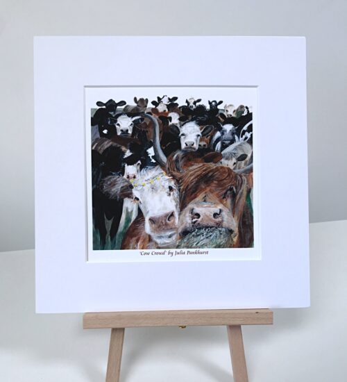 Cows, Highland Cows Pankhurst Gallery