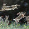 Hare Antics