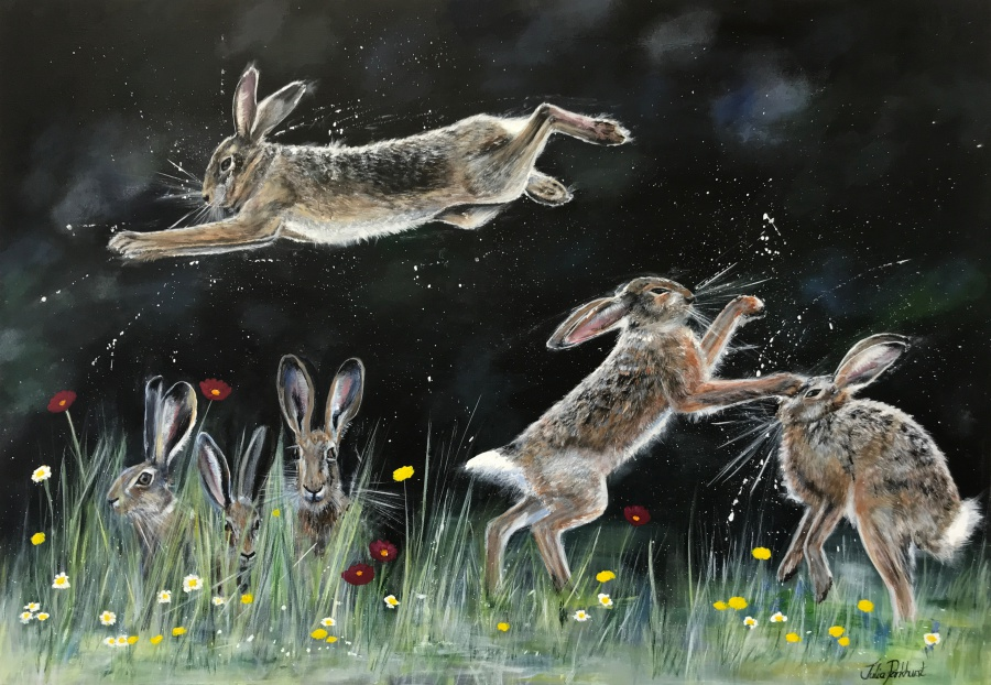Hare Antics