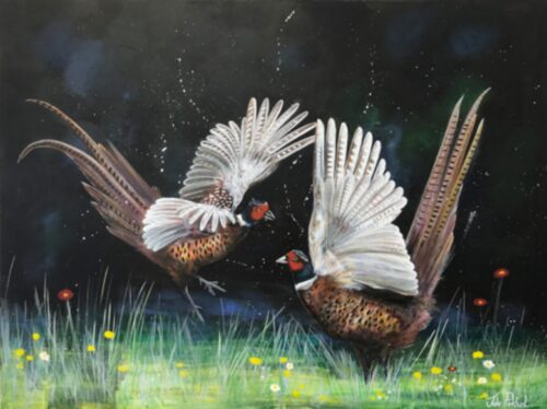 Fighting Pheasants