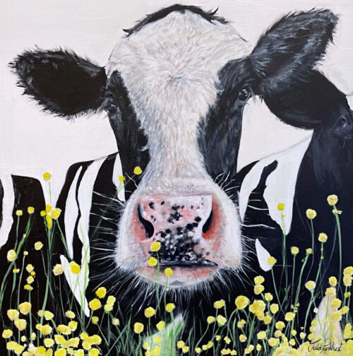 Buttercup Friesian Cow Painting Art Pankhurst Gallery