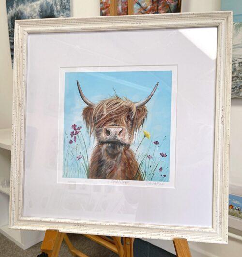 Ronald Jnr Highland Cow Art Pankhurst Gallery Frame Display